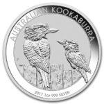 kookaburra-2017