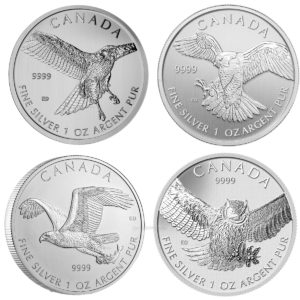 birds-of-prey-series-silver