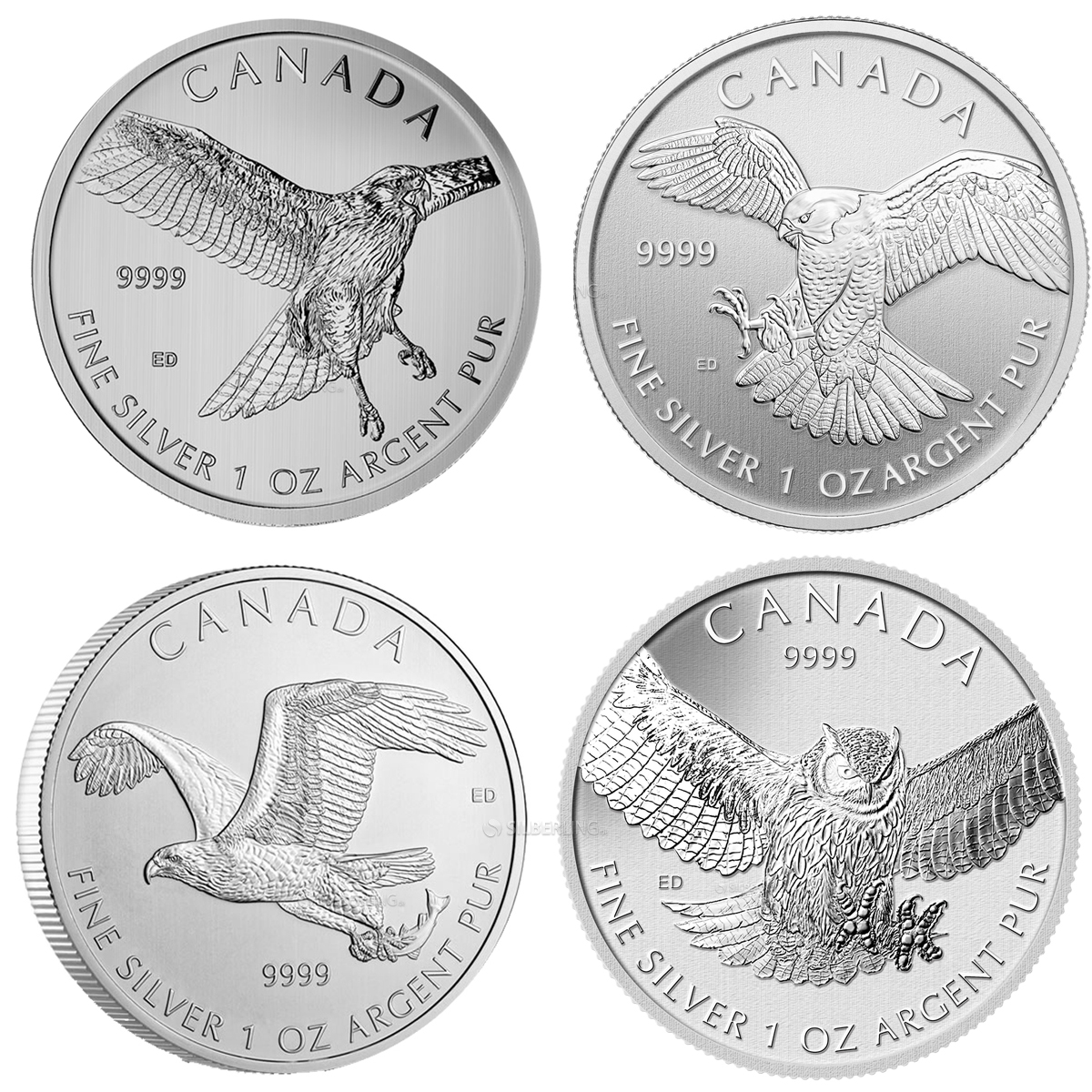 Full 4-Coin Series: 1 oz Silver Canadian Birds of Prey (2014-2015) ONLY 8 sets available